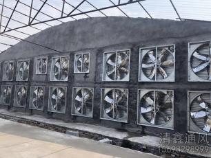 负压风机养殖场安装施工